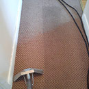 Carpet Cleaning of a Dirty Red Carpet in Essex